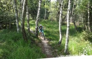 Chiemgau Mountainbike